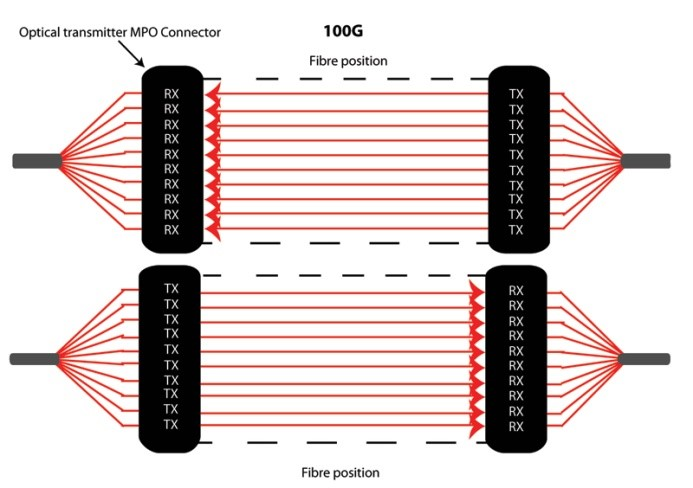 MTP MPO connectivity 100G