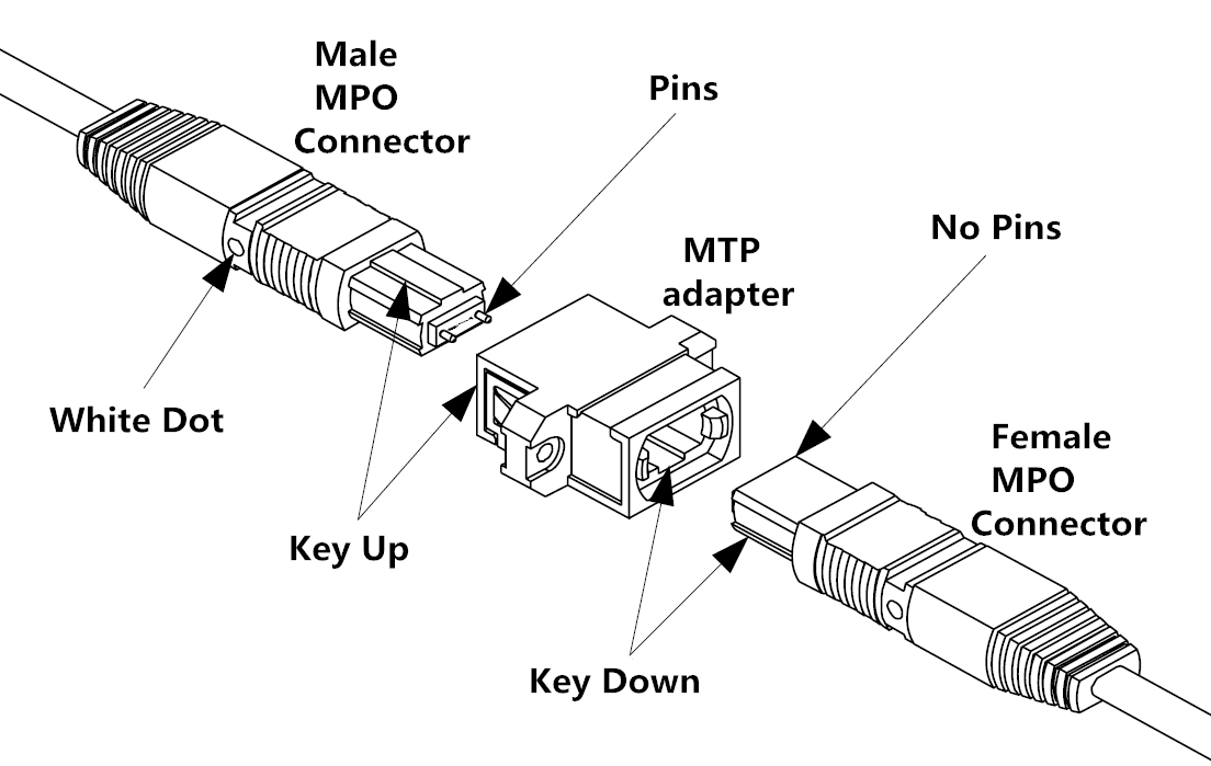 MTP MPO connectivity