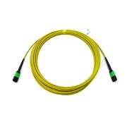 Fiberstore MPO/MTP Patch Cable