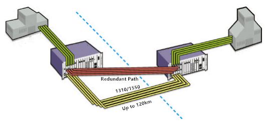 redundant fiber path