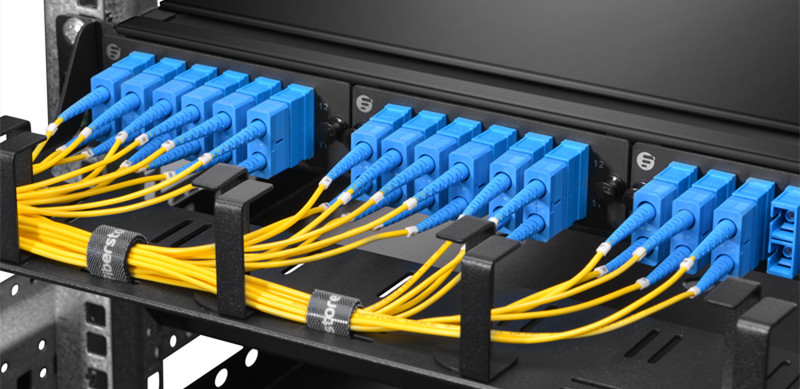 Single mode fiber